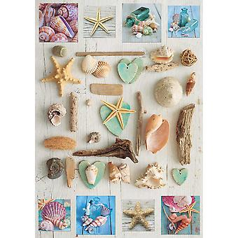 Educa Seashells Collage Jigsaw Puzzle (1000 Pieces)