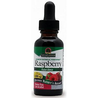 Nature's Answer Red Raspberry Leaf 30ml 1379