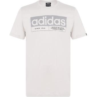adidas Yeni Box Linea T Shirt Erkekler