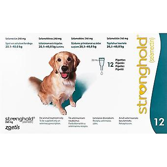 Stronghold Teal Dogs 20-40kg (44-88lbs) - 12 Pack