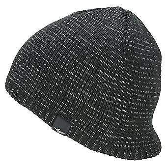 Sealskinz WP Cold Weather Reflective Beanie - Black