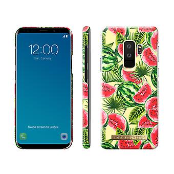 iDeal Of Sweden Samsung Galaxy S9 Plus skal - ONE IN A MELON