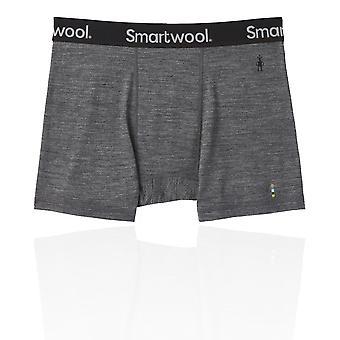 Smartwool Merino Sport 150 Boxer Briefs - SS21