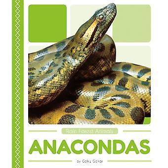Rain Forest Animals Anacondas
