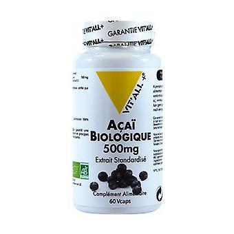 Acai Bio 500mg Gestandaardiseerd Extract 60 plantaardige capsules