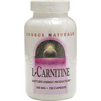 Source Naturals L-Carnitine, 500 MG, 120 Caps