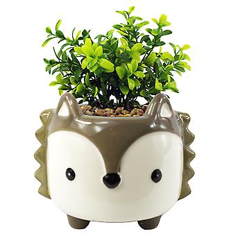 15cm Ceramic Grey Fox Planter with Artificial Crassula Plant