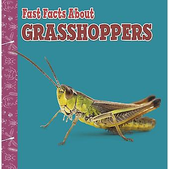 Fast Facts About Grasshoppers by Julia GarsteckiDerkovitz