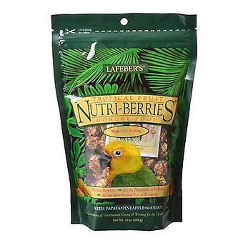 Lafeber Tropical Fruit Nutri-Berries Conure Food - 10 oz