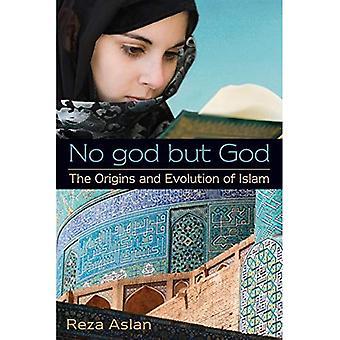 Aucun Dieu mais Dieu: les origines et l'évolution de l'Islam