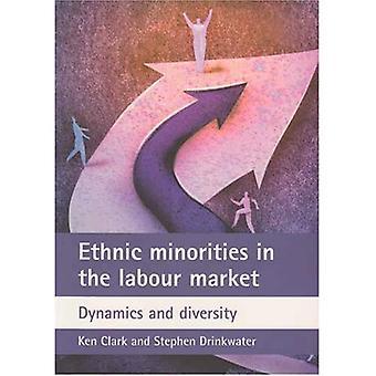Etniska minoriteter på arbetsmarknaden: dynamik och mångfald