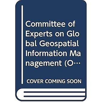 Verslag over de vierde zitting van de VN-Commissie van deskundigen over wereldwijde Geospatial informatiemanagement