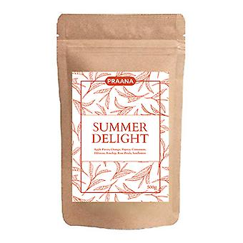 Praana Tea-zomer Delight fruit Infusion catering Pack 500g