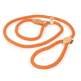 Shires Digby et Fox Reflective Slip Dog Lead