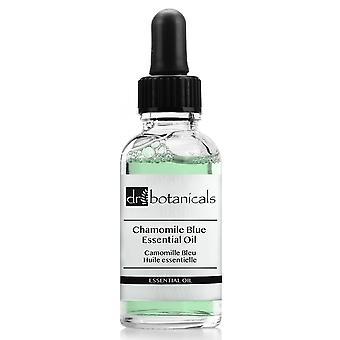 Chamomile blue essential oil