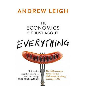 The Economics of Just About Everything: The hidden reasons for our curious choices and surprising successes in...