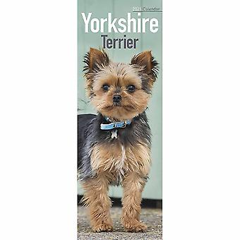 Otter House 2021 Slim Kalender-yorkshire Terrier
