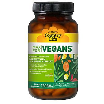 Country Life Vegetarian Support, 120 Tabs