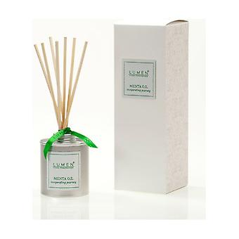 Essence Diffuser Mint Sticks Essential Oil 100 ml of essential oil