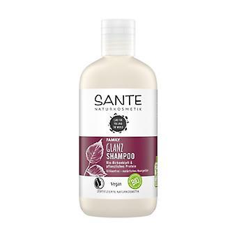 Shine Shampoo Family Birch & Vegetable Protein 250 ml