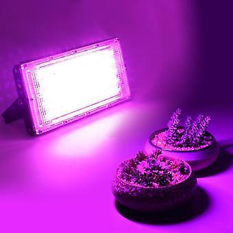 Наборы для выращивания растений led grow light полный спектр 50w ac 220v фито лампа для растений