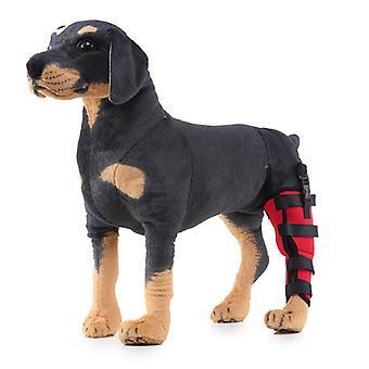 Evago Extra podporný pes pes pes psa zadné nohy Hock kĺb zábal chráni rany, ako hoji kompresnú ortézu lieči a zabraňuje zraneniam a vyvrtnutiam pomáha