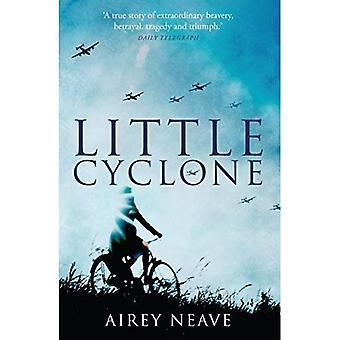 Petit Cyclone