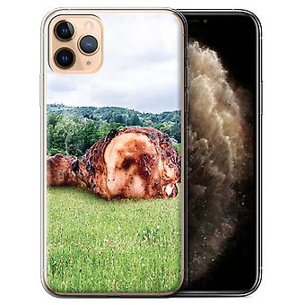 STUFF4 Gel TPU Case/Cover for Apple iPhone 11 Pro Max/Meatior/Down Under