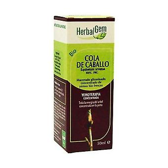 Horse tail 50 ml