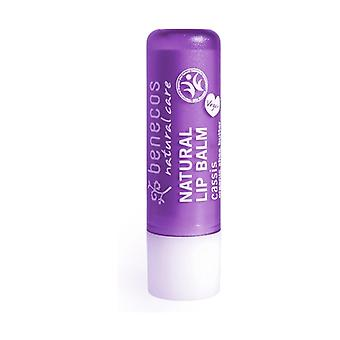 Organic blackcurrant lip balm 1 unit (Currant)