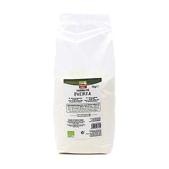 力の小麦粉1つのkg