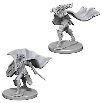 Pathfinder Deep Cuts Unpainted Miniatures (W4) Elf Female Paladin