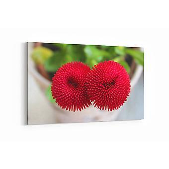 Malerei - Rote Gänseblümchen - 90x60cm