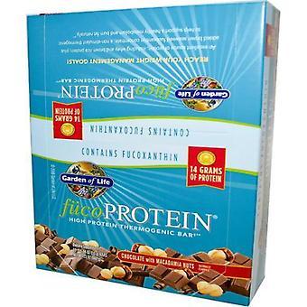 Garden of Life Fuco Protein Bars Peanut Butter crunch 12 bars