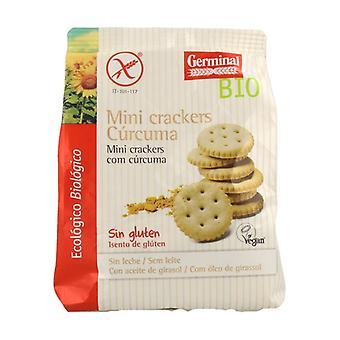 Turmeric Gluten Free Mini Cracker Bio 100 g