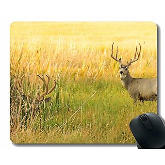 Mouse pads 300x250x3 mouse pad grass meadow looking for rack -stitched edges