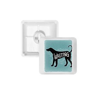 Koiran painetut näppäinkapselit mekaaniselle näppäimistölle