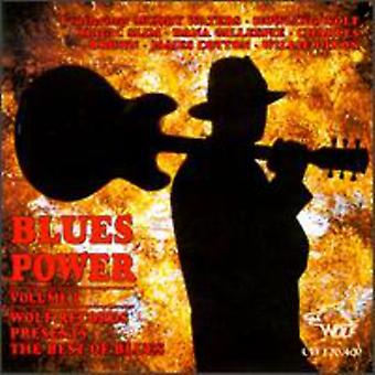 Blues Power - Blues Power: Vol. 1-wolfen Records presenterar T [CD] USA import