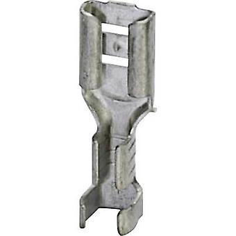 Receptáculo de Phoenix Contact 3240155 lâmina largura do conector: 4.8 mm espessura do conector: 0,8 mm 180 ° não isolada o Metal 100 PC (s)