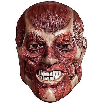 Skinner Mask For Halloween