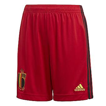 2020-2021 Belgium Home Adidas Football Shorts (Kids)