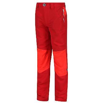 Regatta Boys Sorcer IV Mountain Polyester Walking Trousers