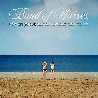 Band of Horses - Why Are You Ok (Viny [Vinyl] USA import