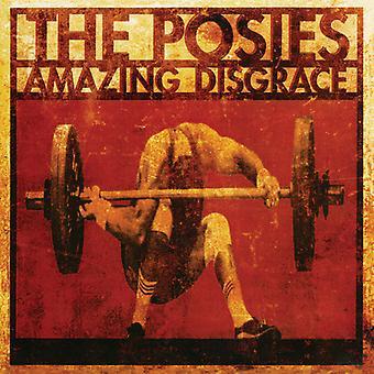 Posies - Amazing Disgrace [CD] USA import