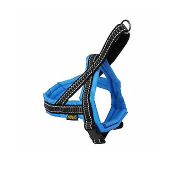 MNC Pet Products Classic T-Harness for Dogs Full Nylon Padding, Blue