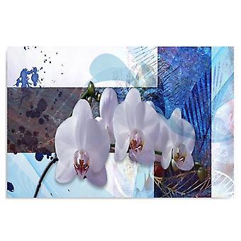 Canvas, Picture on canvas, orchid composition