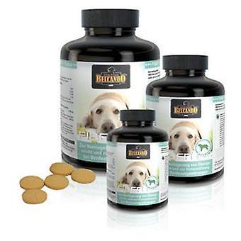 Belcando волоконно вкладки (собаки, добавки)