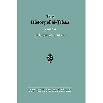 Al-Tabarin historia: v. 6: Vol 6 (SUNY Series in Near Eastern Studies)