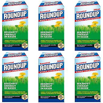 Sparset: 6 x ROUNDUP® Lawn Weed-Free, 250 ml