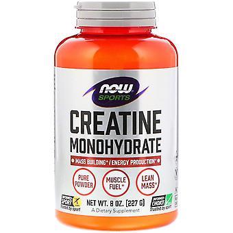 Now Foods, Sports, Creatine Monohydrate, Pure Powder, 8 oz (227 g)